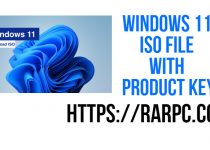 Windows 11 ISO File